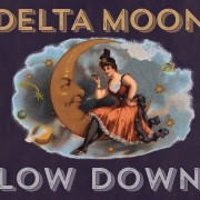 Delta Moon Low Down cover